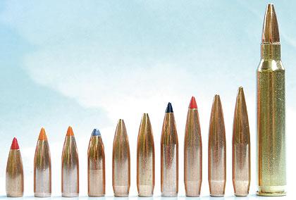 5.56 bullet sizes