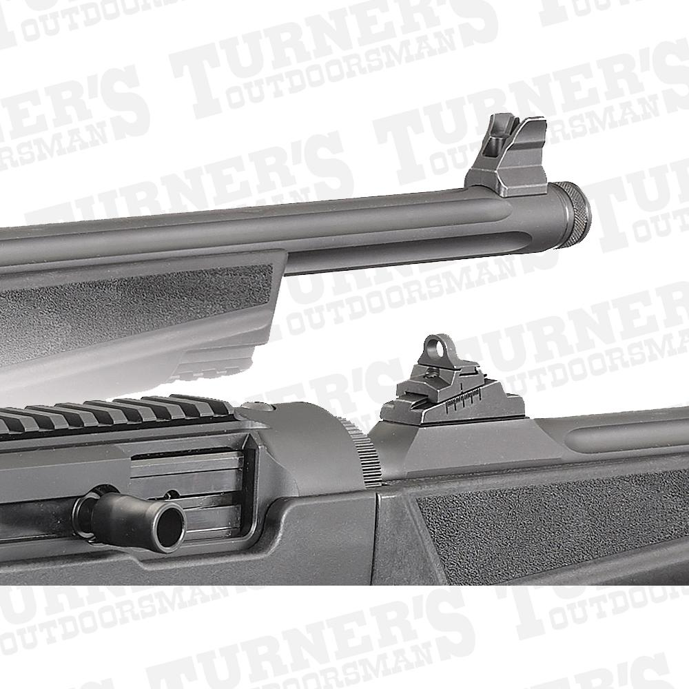 Ruger PCC Irons
