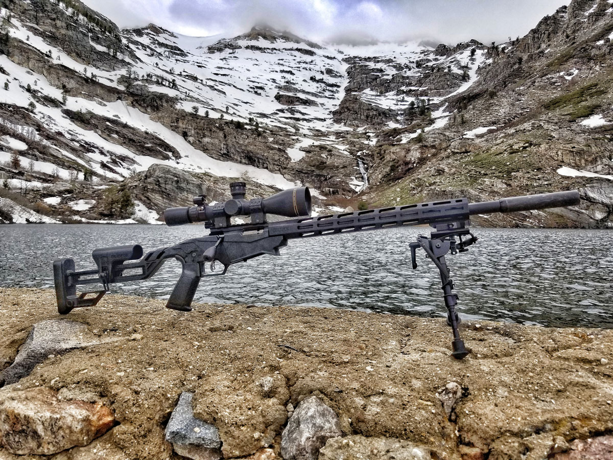 Ruger Precision Rimfire GunsAmerica Digest