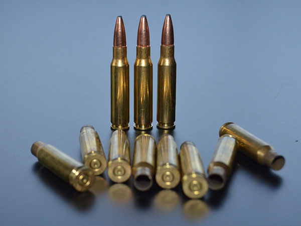 .308 and shells